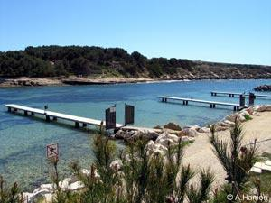 port des tamaris